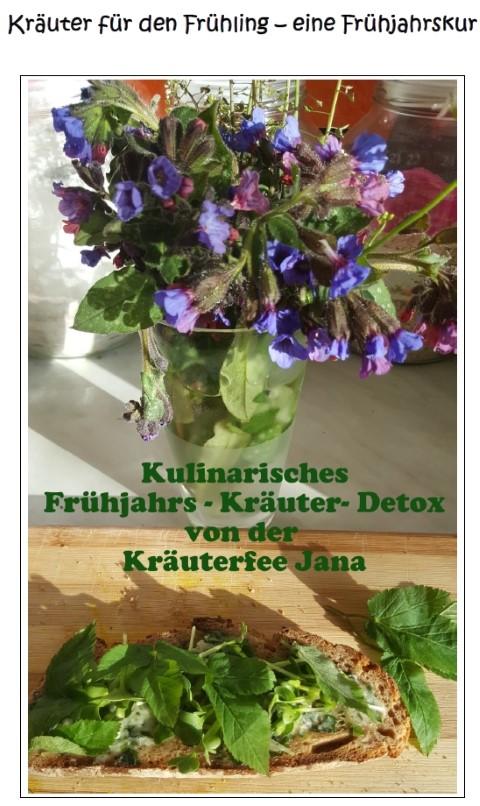 Cover E-Book Kräuter Detox für den Frühling